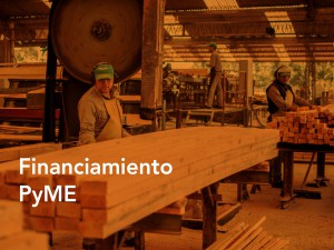 Financiamiento PyME2