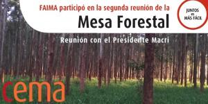 mesa forestal twitter